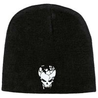 Destruction - Skull Logo (Beanie)