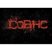 Children Of Bodom - COBHC (Textile Poster)