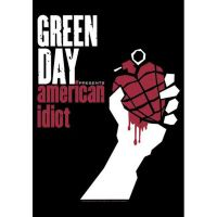 Green Day - American Idiot (Textile Poster)