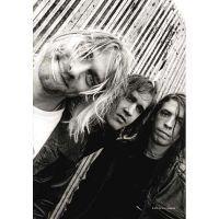 Nirvana - Band (Textile Poster)